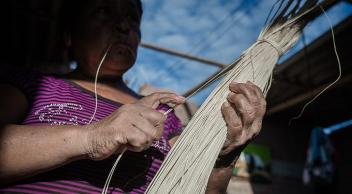 Tejedoras de paja toquilla fueron perjudicadas por el Niño